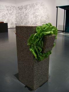 """Giovanni Anselmo """"Untitled"""" (scultura che mangia l'insalata)– 1968…"""