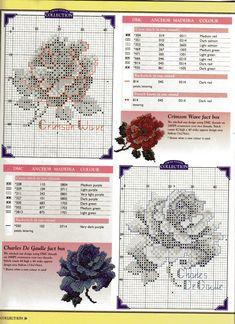 rose collection sheila hudson 3/5