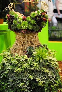 Succulents grown on a wire dress form. Diy Garden Projects, Garden Crafts, Art Projects, Garden Planters, Planting Succulents, Artificial Succulents, Succulent Plants, Planting Flowers, Philadelphia Flower Show