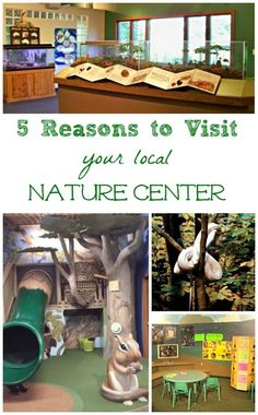 So many amazing things to do at nature centers!  These are AWESOME places to visit during the Fall & Winter months (gets the kids out of the house!)
