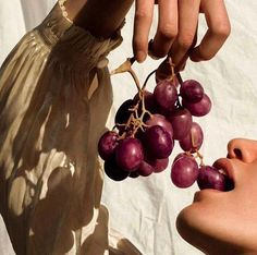 grapes, aesthetic, and fruit εικόνα Yennefer Of Vengerberg, Dionysus, Greek Gods, Gods And Goddesses, Vaporwave, Instagram, Artsy, Beautiful, Portrait