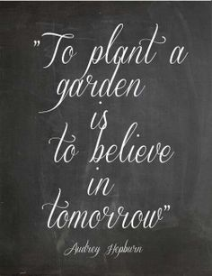 garden quotes to plant a garden is to believe in tommorrow Audrey Hepburn The Words, Cool Words, Great Quotes, Quotes To Live By, Me Quotes, Inspirational Quotes, Motivational Quotes, Positive Quotes, Motivational Wallpaper
