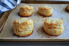 Garlic Cheddar Biscuits by Posie Harwood
