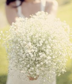 baby's breath pouf.