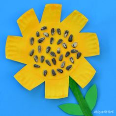 This bright yellow sunflower craft is a fun kid craft for late summer, early fall as we start to see sunflowers towering high in gardens and fields.