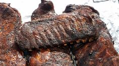 Tuffy Stone literally makes the best ribs in America. They won at The American Royal Barbecue in Kansas City, Missouri. Bbq Pork Ribs, Ribs On Grill, Grilling Ribs, Rib Recipes, Grilling Recipes, Recipies, Barbecue Recipes, Sauce Recipes, Perfect Fried Chicken