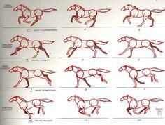 horse-rotoscope-animators-survival-kit.jpg (2608×1978)
