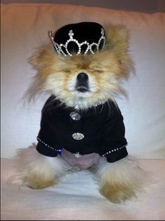 1000 Images About Giggy On Pinterest Lisa Vanderpump