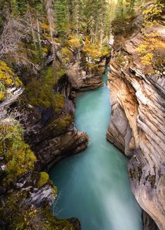 ✯ Canyon carved by glacier runoff in the Canadian Rockies near Banff, Jasper