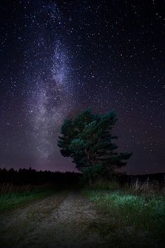 """etherealvistas: """" Milky Way (Finland) by Latyrx """" Landscape Photography, Nature Photography, Night Photography, Photography Basics, Scenic Photography, Aerial Photography, Landscape Photos, Pretty Pictures, Cool Photos"""