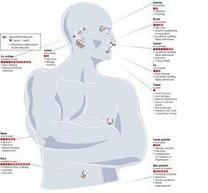 Body Piercing charts   Como veran en la lengua es uno de los pocos piercing que cicatrizan en ...