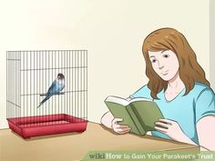 'Training your Parakeet'. This one's OK, except for the wing-clipping (I don't think that's humane). Otherwise, good advice. A lot of info.