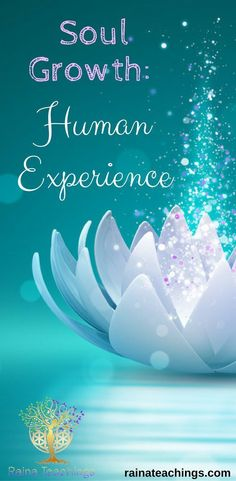 A channeled article by Raina about the humans experience with soul growth rainateachings Spiritual Enlightenment, Spiritual Path, Spiritual Growth, Spiritual Awakening, Spiritual Guidance, Psychic Development, Spiritual Development, Emotional Healing, Self Healing