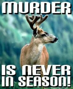 """The etymology (i. """"true meaning"""") of the word """"murder"""" is """"to take the life of a beast/creature/living soul."""" From 2 roots: mur/mer = (to take) life + der/deer = """"beast/creature/living, breathing soul. Reasons To Be Vegan, Animal Help, Animal Babies, Beast Creature, Trophy Hunting, Stop Animal Cruelty, Animal Protection, Vegan Animals, Save Animals"""