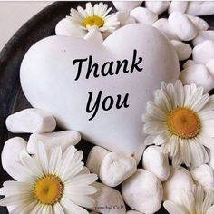 Thank You Pictures, Thank You Images, Love You Images, Thank You Messages, Thank You Cards, Birthday Wishes Flowers, Happy Birthday Wishes Cards, Happy Birthday Fun, Birthday Messages