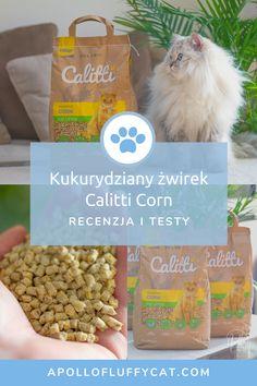 Przez ostatnie kilka tygodni testowałem polski żwirek kukurydziany Calitti CORN. Czy spełnia wszystkie kocie i ludzkie potrzeby? Odpowiedź na to pytanie znajdziesz w recenzji na moim blogu. Dog Food Recipes, Lifestyle, Pets, Blog, Dog Recipes, Blogging, Animals And Pets