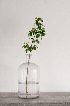 枝ものグリーンとガラスのフラワーベースの爽やかな組み合わせ♪シンプルにさりげなく飾ることができるので、どんなインテリアとも相性抜群です。しかも生花よりも長持ちするので長い期間楽しめる!新緑を思う存分楽しんでみてくださいね♪