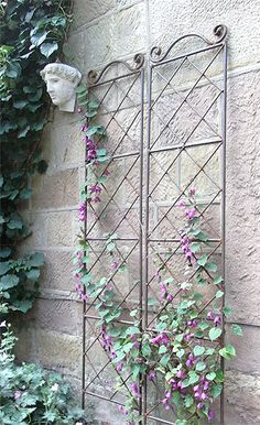 1000 ideas about metal trellis on pinterest trellis - Treillis metal jardin ...