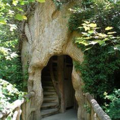 It would be beyond awesome to have one like this. I love it because it is inside the tree,we'll the stairs.