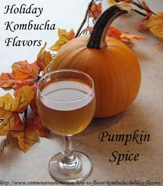 How to Flavor Kombucha - Holiday Flavors - Cranberry Collins, Pumpkin Spice, Ginger Spice, Toffee Almond, Apple Cinnamon, Cinnamon Spice, Cherry Bounce, Citrus Punch and Peppermint Patty