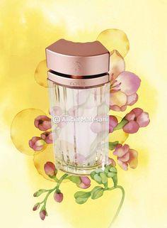 Perfumes-Tous