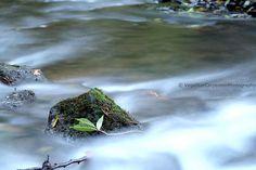 Rock River*