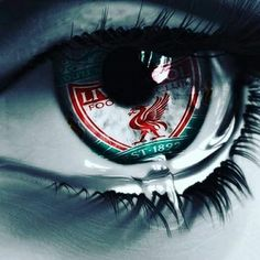 Its in ghe eyes Liverpool Tattoo, Liverpool Logo, Liverpool Anfield, Liverpool Football Club, Lfc Wallpaper, Liverpool Fc Wallpaper, Liverpool Wallpapers, 1.fc Union, Liverpool Clothing