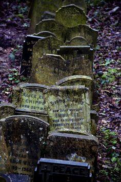London, Abney Park Cemetery
