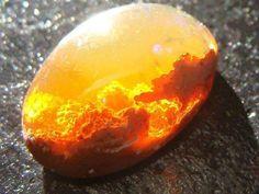 <font><font>19 Piedras preciosas Opal increíblemente raras</font></font>