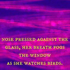 Happy Haikuesday! Monk does cute little things when she's birdwatching.  #haiku #haikusday #haikuesday #haikutuesday #haikuchallenge #writing #poetry #poem #prose #writingchallenge #writingprompt #writersofinstagram #poetsofinstagram #cats #birdwatching #fivesevenfive #windowcat