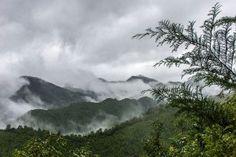 The misty mountains Kumano Kodo | Japan