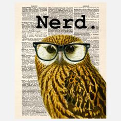 The Nerd Owl Canvas, $39, now featured on Fab.