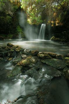 Kerosene Creek is a free hot spring outside of Rotorua NZ #newzealandwalkingtours {#newzealandwalkingtrails#newzealandwalkingtracks}