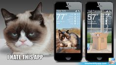Grumpy Cat predicts the weather! Hatefully!!! Weather Kitty app is free, and $1.99 for the Grumpy Cat theme is oh-so-worth it.