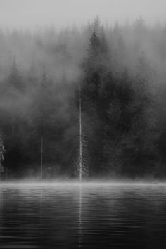 Whistler, Lost Lake on a foggy morning. UGH I want to be near a lake! Landscape Photography, Nature Photography, Photography Tips, Foto Art, Belleza Natural, Whistler, Belle Photo, Beautiful World, Beautiful Places