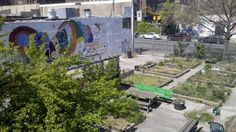 How Grounded in Philly is making vacant lots accessible to the public