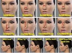 19 best nose shapes images on pinterest faces flawless makeup and