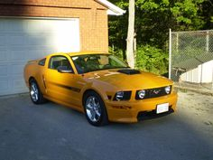 2007 Ford Mustang GT Premium, My new 2007 with shaker hood installed, exterior, gallery_worthy 2007 Mustang Gt, 2005 Ford Mustang, Ford Mustang Shelby Cobra, Ford Shelby, Mustang Fastback, Mustang Cars, Ford Trucks, 4x4 Trucks, Chevrolet Trucks