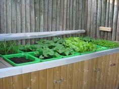 De eerste groentes in de groentebakken: Vorig jaar herfst heb ik een tafeltuin gemaakt van tuinhout wat je overal kunt kopen.  Dus... geen tuintafel... maar een tafeltuin.  Deze tuin is multifunctioneel.