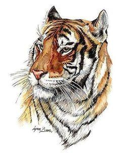 Идея для небольшой тату с тигром