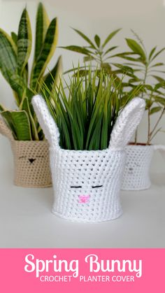 Crochet a Spring Bunny Planter Cover for your 4-inch plants with this quick pictorial and pattern -- perfect for Easter!