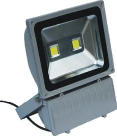 100W COB LED Flood Light