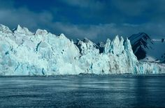 Arctic Nature. Svalbard, Norway.