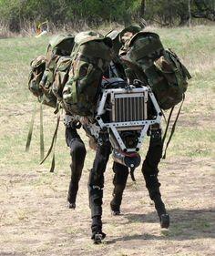Meet Boston Dynamics' weird and wonderful robot family