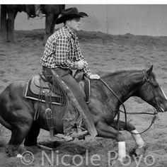 Cutting horse Reining barrel racing rodeo western ranch cowboy cowgirl farm show performance equine horse equestrian pony quarter charro vaquero gymkhana sliding stop