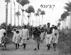 Street with Indian people, palm trees in background. 1922. Guyana, South America