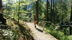 Emmenuferweg Etappe 1: Von Sörenberg nach Schüpfheim Entlebucher, Seen, Kanton, Country Roads, Plants, Stone Stairs, Mountain Landscape, Lucerne, River