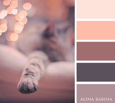 Medium coal and mauve color palette