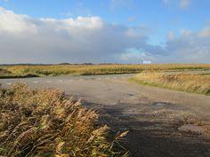 Im Hintergrund die Dünen der Nordsee vor Søndervig. #Søndervig #LodbjergHede #Dänemark