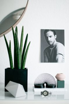 One Plant - Three Styles. Styling No. 1: The Playful Gentleman via Happy Interior Blog